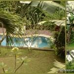 Hôtel en plein coeur des rizières d'Ubud...