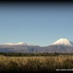 Vue sur les volcans